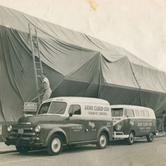 1970's<br />Cloud Termite and Pest Control offers tent fumigation to customers in Manatee and Sarasota counties