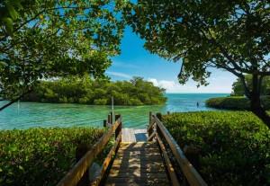 dock-in-florida